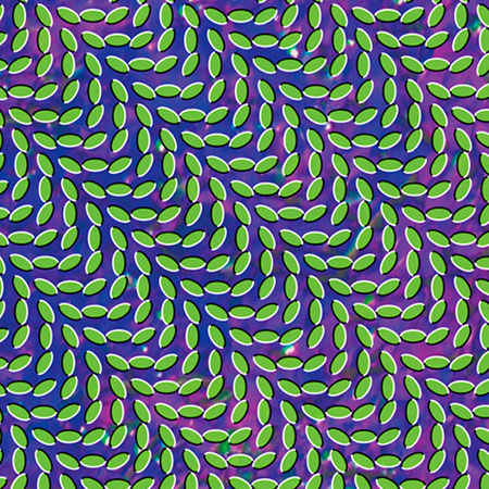 animal_collective_merriweather345.jpg